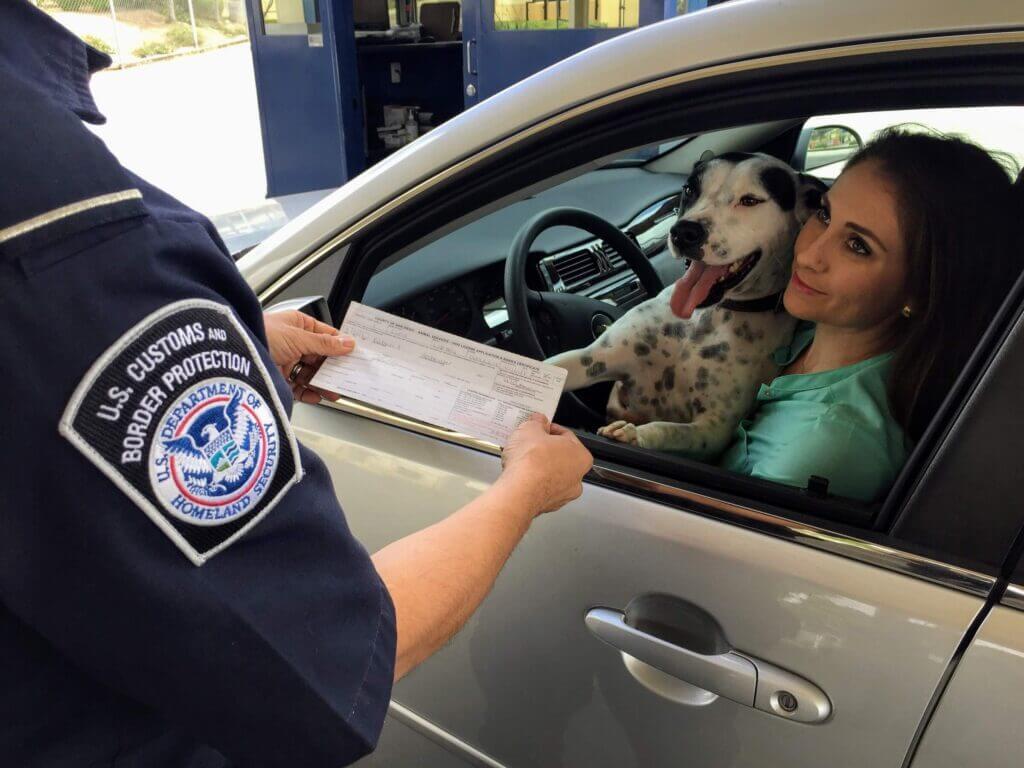 Mujer junto a su perro mostrando documentación a un oficial del Departamento de Seguridad Nacional.